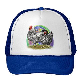 Wyandotte:  Easter Egg Pair Trucker Hat