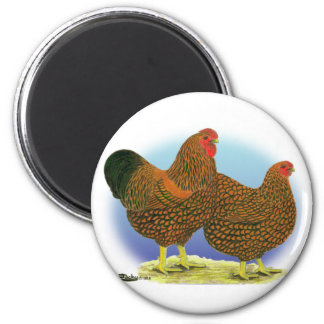 Wyandotte:  Golden-laced Pair Magnet