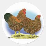 Wyandotte:  Golden-laced Pair Classic Round Sticker
