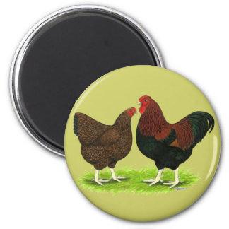 Wyandotte:  Partridge Pair 2 Inch Round Magnet
