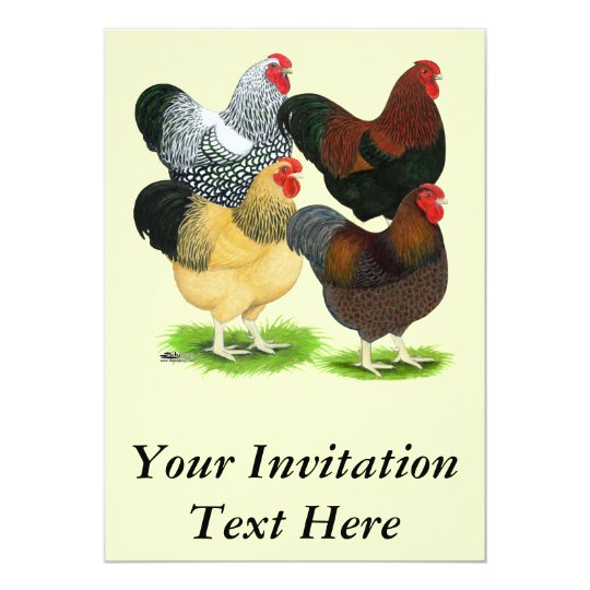 Wyandotte:  Rooster Assortment Card
