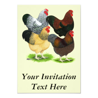 """Wyandotte:  Surtido del gallo Invitación 5"""" X 7"""""""