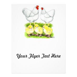 Wyandotte White Chicken Family Flyer Design