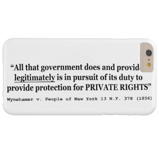 Wynehamer v the People of New York 13 NY 378 1856 Barely There iPhone 6 Plus Case