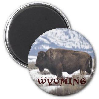 Wyoming 2 Inch Round Magnet