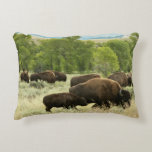 Wyoming Bison Nature Animal Photography Accent Pillow