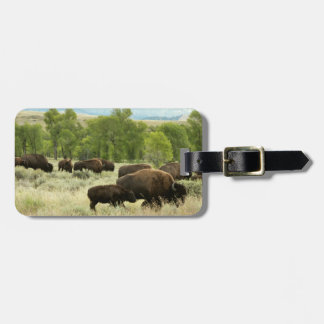 Wyoming Bison Nature Animal Photography Bag Tag