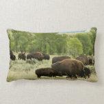 Wyoming Bison Nature Animal Photography Lumbar Pillow
