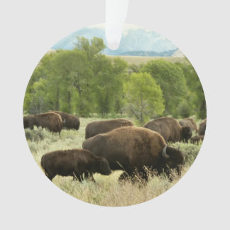 Wyoming Bison Nature Animal Photography Ornament