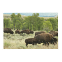 Wyoming Bison Nature Animal Photography Placemat