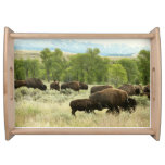 Wyoming Bison Nature Animal Photography Serving Tray