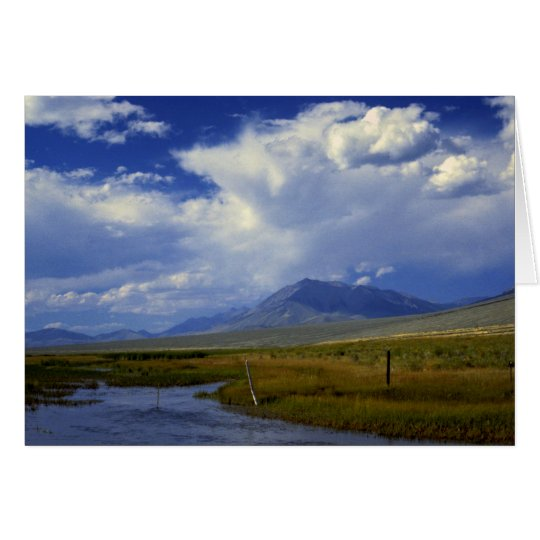 Wyoming Creek Card