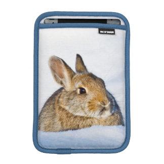 Wyoming, el condado de Sublette, el conejo de rabo Funda De iPad Mini
