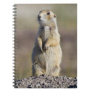 Wyoming, el condado de Sublette, pradera Spiral Notebook