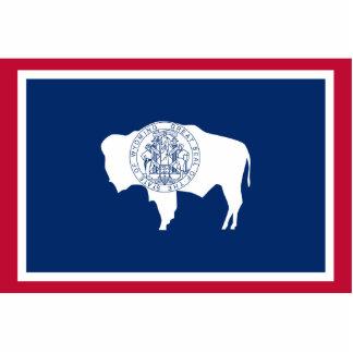 Wyoming, Estados Unidos señala por medio de una ba Fotoescultura Vertical