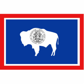 Wyoming Flag Magnet Cut Out