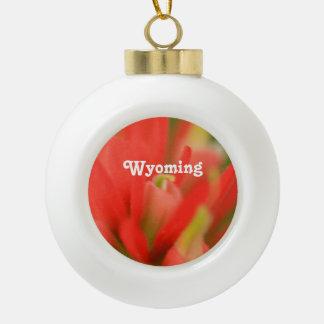 Wyoming Indian Paintbrush Ceramic Ball Christmas Ornament