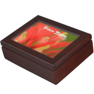 Wyoming Indian Paintbrush Memory Boxes