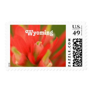 Wyoming Indian Paintbrush Postage Stamps