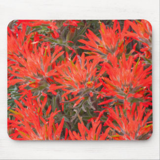 Wyoming, Lincoln County, Desert Paintbrush Mouse Pad