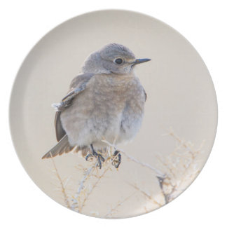 Wyoming, Lincoln County, Female Mountain Dinner Plate