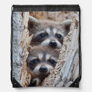 Wyoming, Lincoln County, Raccoon Drawstring Bag