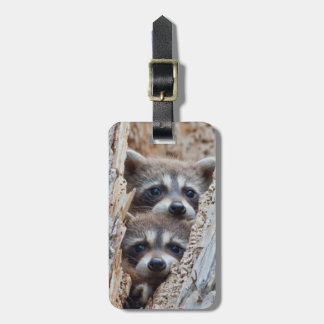 Wyoming, Lincoln County, Raccoon Tag For Luggage