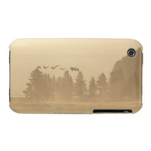 Wyoming, los E.E.U.U. iPhone 3 Cárcasas