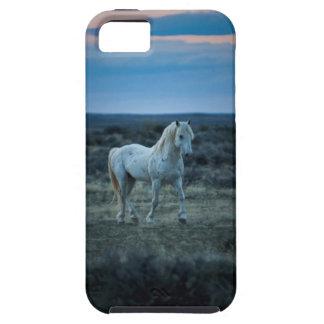 Wyoming, los Estados Unidos de América iPhone 5 Cárcasa