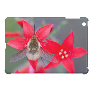 Wyoming, Sublette County, Bee Fly with proboscis iPad Mini Cover