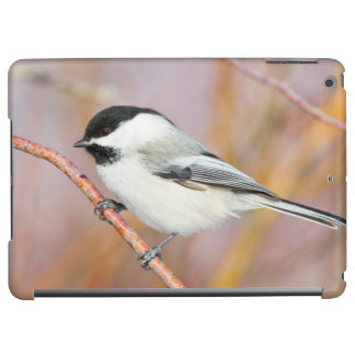 Wyoming, Sublette County, Black-capped Chickadee Cover For iPad Air