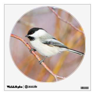 Wyoming, Sublette County, Black-capped Chickadee Wall Sticker