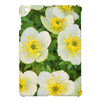 Wyoming, Sublette County, Close-up of a group iPad Mini Cover