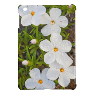 Wyoming, Sublette County, Close-up of Phlox iPad Mini Case