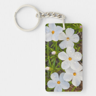 Wyoming, Sublette County, Close-up of Phlox Keychain