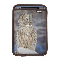Wyoming, Sublette County, Great Gray Owl 1 iPad Mini Sleeve