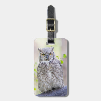 Wyoming, Sublette County, Great Horned Owl 2 Bag Tag