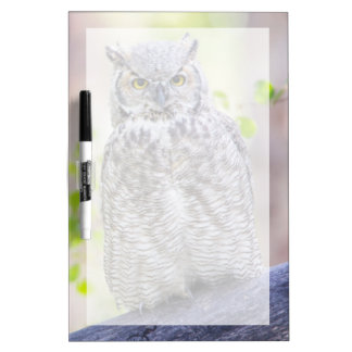 Wyoming, Sublette County, Great Horned Owl 2 Dry-Erase Board