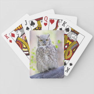 Wyoming, Sublette County, Great Horned Owl 2 Playing Cards