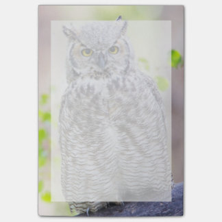 Wyoming, Sublette County, Great Horned Owl 2 Post-it Notes