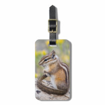Wyoming, Sublette County, Least Chipmunk Bag Tag