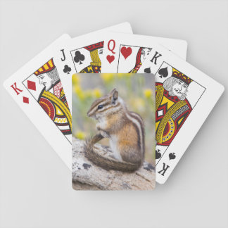 Wyoming, Sublette County, Least Chipmunk Playing Cards