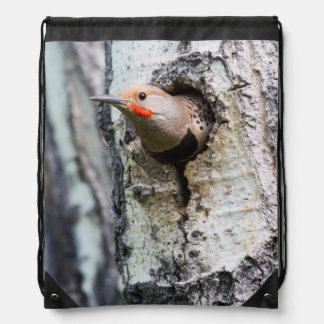 Wyoming, Sublette County, Male Northern Flicker Drawstring Backpack