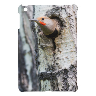 Wyoming, Sublette County, Male Northern Flicker iPad Mini Cover
