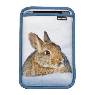 Wyoming, Sublette County, Nuttall's Cottontail 1 iPad Mini Sleeve