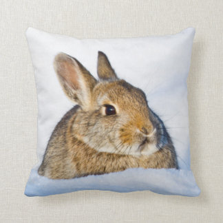 Wyoming, Sublette County, Nuttall's Cottontail 1 Pillow