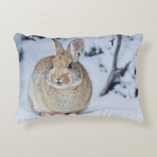 Wyoming, Sublette County, Nuttall's Cottontail 2 Accent Pillow