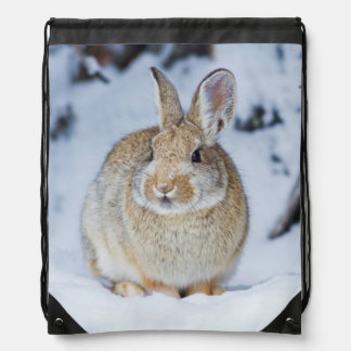 Wyoming, Sublette County, Nuttall's Cottontail 2 Drawstring Bag