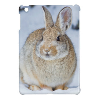 Wyoming, Sublette County, Nuttall's Cottontail 2 iPad Mini Cases