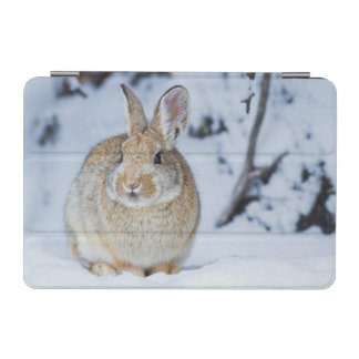 Wyoming, Sublette County, Nuttall's Cottontail 2 iPad Mini Cover